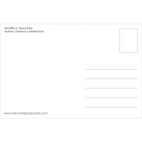 Postcard #238
