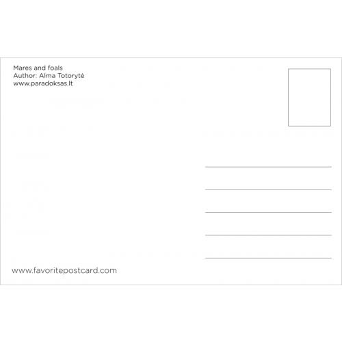 Postcard #317